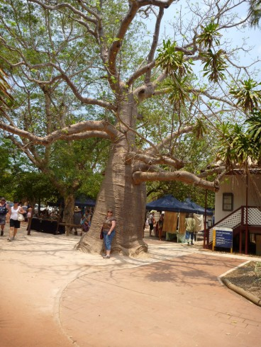 At the courthouse markets - Broome