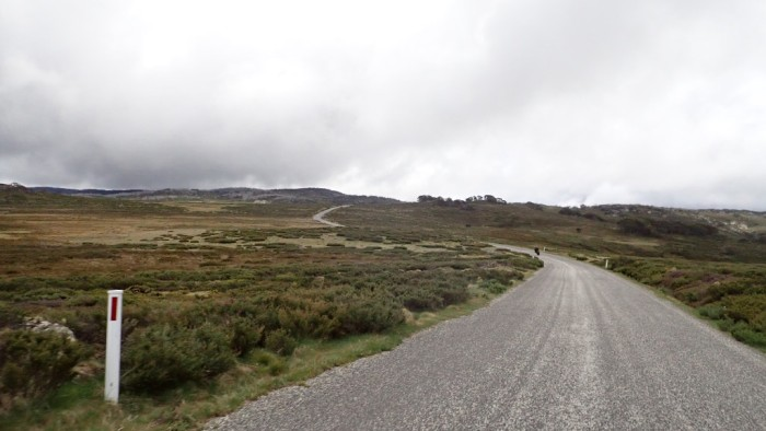 Bogong plains